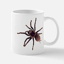 Hairy Brown Tarantula Mugs