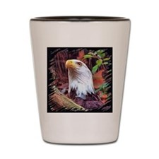 FL Bald Eagle 001 Shot Glass