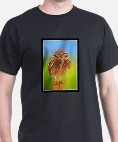 Owl You Looking at Me copy T-Shirt