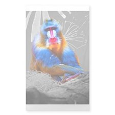Mandrill Decal