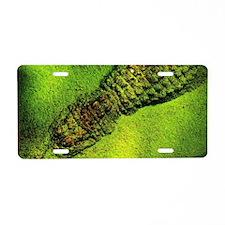 Gator Aluminum License Plate