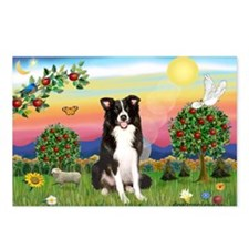 Bright Country/Border Collie Postcards (Package of