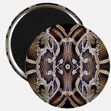 Python Magnets