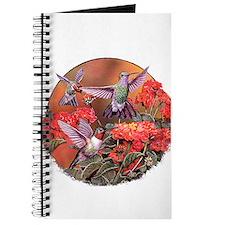 3 Hummingbirds Journal