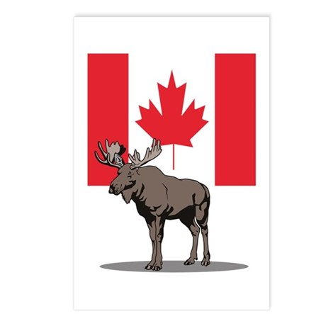Canadian Moose Postcards (Package of 8)