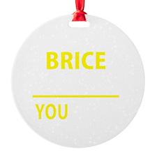 Cute Brice Ornament