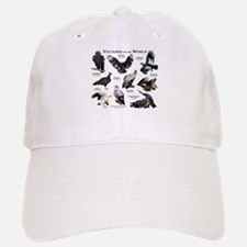 Vultures of the World Baseball Baseball Cap