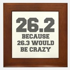 BECAUSE-26.3-WOULD-BE-CRAZY-FRESH-GRAY Framed Tile