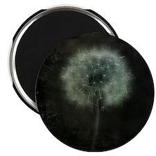 Unique Dandelion white black Magnet