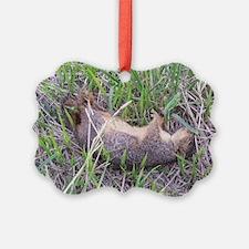 Dead Squirrel Ornament