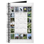 2015 Photo Calendar Journal