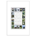 2015 Photo Calendar Posters Large Poster