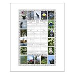 2015 Photo Calendar Posters Small Poster
