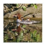 Merganser Family Tile Coaster