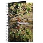 Merganser Family Journal