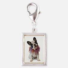 French Bulldog Puppy Charms