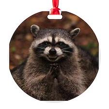 Evil Raccoon Ornament