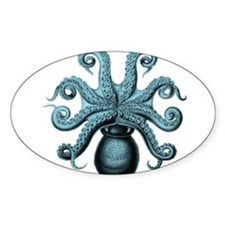 Teal Octopus Decal