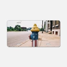 Broadway fire hydrant -STL Aluminum License Plate