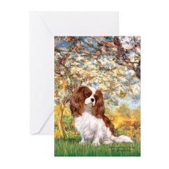 Spring & Cavalier Greeting Cards (Pk of 10)