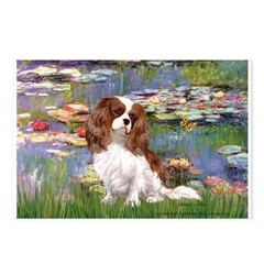 Lilies2 & Cavalier Postcards (Package of 8)