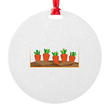 Carrots Ornament
