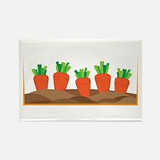 Carrots Magnets