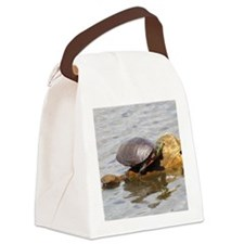 Painted Turtle Canvas Lunch Bag