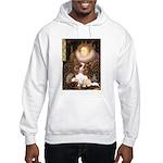 The Queen's Cavaliler Hooded Sweatshirt
