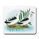 Magpie Drake and Duck Mousepad