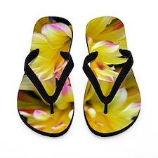 Cute Yellow flower Flip Flops