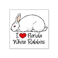 I Heart Florida White Rabbits Sticker