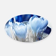 Crocus in infrared sunlight Oval Car Magnet