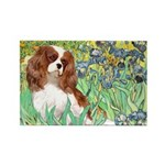 Irises & Cavalier Rectangle Magnet (10 pack)