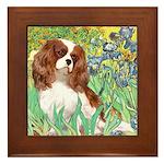 Irises & Cavalier Framed Tile