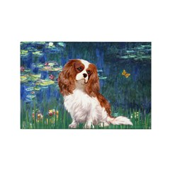 Lily Pond (#5) / Cavalier Rectangle Magnet