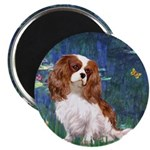 Lily Pond (#5) / Cavalier Magnet