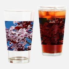 Almond Blossom Drinking Glass