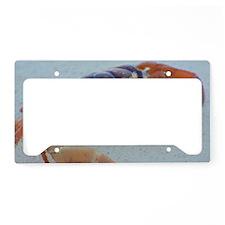 Unique Crabby License Plate Holder