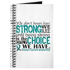 Ovarian Cancer HowStrongWeAre Journal