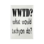 WWTD Rectangle Magnet (100 pack)