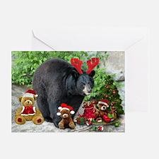 Teddy Bear Fun Greeting Cards