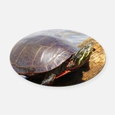 Painted Turtle Oval Car Magnet