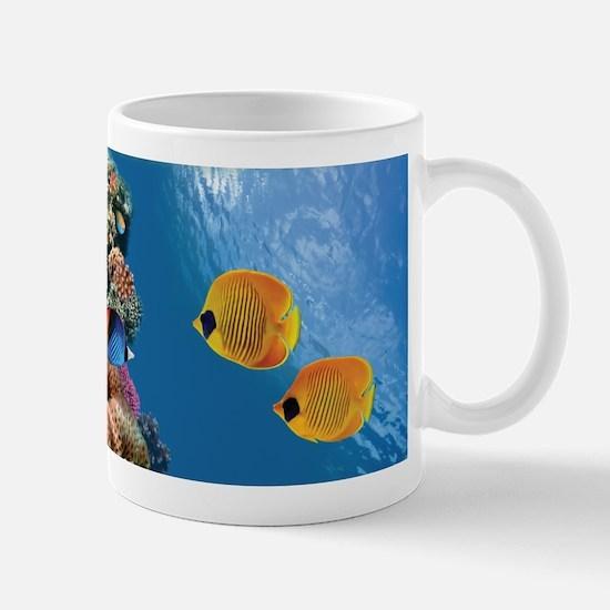 Coral Colony Mugs