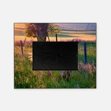 Evening Sun Picture Frame