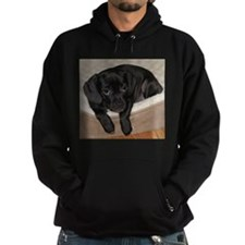 Jewel the Puggle puppy Hoodie