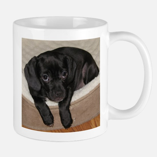 Jewel the Puggle puppy Mugs