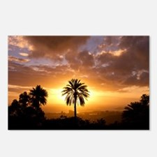 SUNSET SILHOUETTE Postcards (Package of 8)