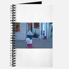 The Hil Journal