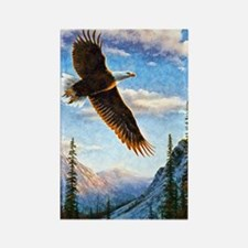 Soaring Bald Eagle Rectangle Magnet Magnets